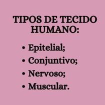 Tipos de Tecidos Humanos