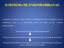 Aula 9 Sistema de endomembranas