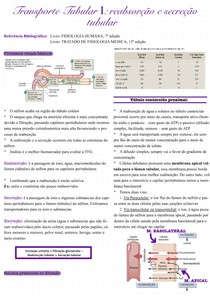 Transporte Tubular I_ reabsorção e secreção tubular