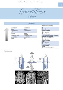Neuroanatomia radiológica