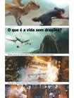 Matéria sobre Harry Potter