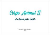 Apostila Para Colorir - Corpo Animal II (PARTE 1) - ADAPTAÇÃO