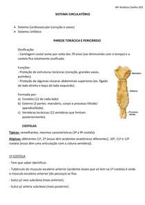 Sist Circulatório- parede torácica e pericárdio