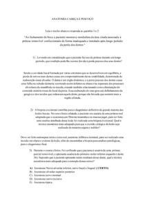 SEMINARIO 2º SEMESTRE ANATOMIA CABEÇA E PESCOÇO