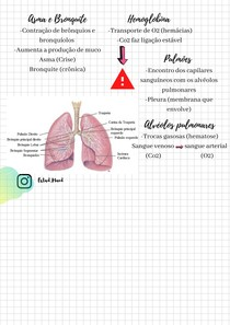 Sistema Respiratório parte 2
