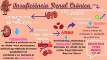 Insuficiência Renal Crônica (1)