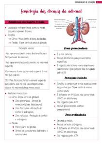 Semiologia das doenças suprarrenais