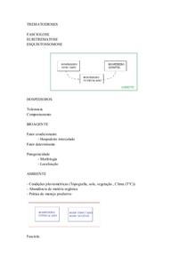 epizootiologia 16.11.11
