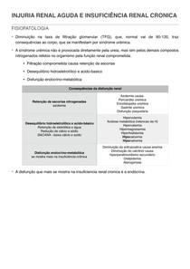 6 INJURIA RENAL AGUDA E INSUFICIENCIA RENAL CRONICA