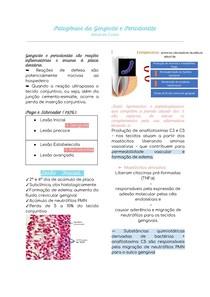 Patogênese da Gengivite e Periodontite