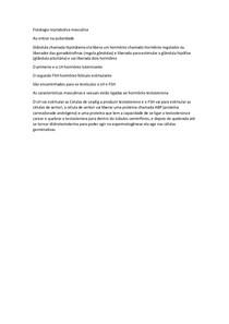 fisiologia reprodutiva masculina embriologia