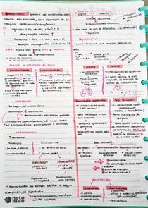 Biologia Introdução