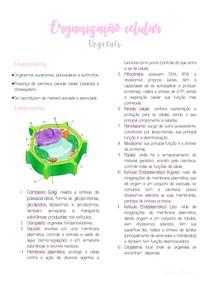 Organização Celular - Vegetais