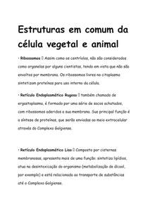 Estruturas em comum em Células Vegetais e Animais