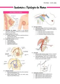Anatomia e Fisiologia da Mama - Ginecologia