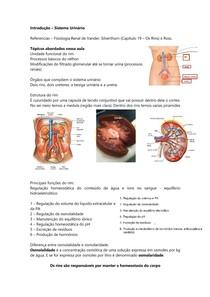 Introdução ao Sistema Urinário