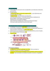 Anti-inflamatórios não esteroides (AINE)