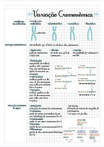 Variação cromossômica