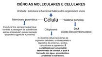 RESUMO CIENCIAS CELULARES E MOLECULARES
