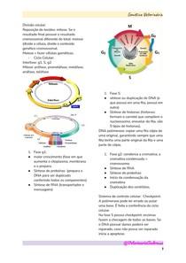 Genética Veterinária - 1º SEMESTRE (UNINOVE)