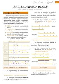 Alterações cromossômicas estruturais (rearranjos cromossômicos e câncer) - Citogenética