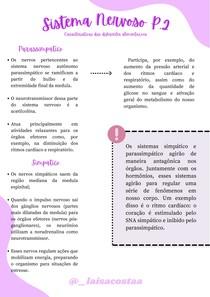 Sistema Nervoso Part.2