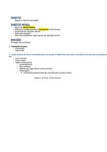 Resumo detalhado de D. Penal I