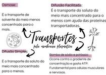 TRANSPORTE PELA MEMBRANA PLASMÁTICA - MAPA MENTAL