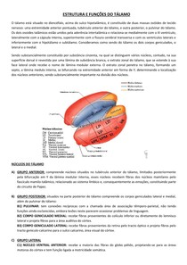 ESTRUTURA E FUNÇÕES DO TÁLAMO - NEUROLOGIA/NEUROANATOMIA
