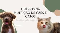 LIPÍDEOS NA NUTRIÇÃO DE GATOS