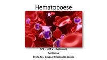 Hematopoese