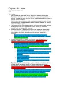 Neuroanatomia II - Conteúdo inicial