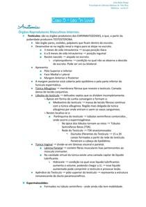 Anatomia - Caso 5 - 1º P