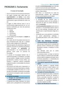Processo de Fecundação/ Anticoncepção de Emergência