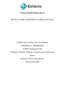 PCC POLITICAS 2020.2 ead