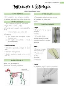 Introdução à Osteologia