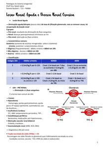 Lesão Renal Aguda e Doença Renal Crônica