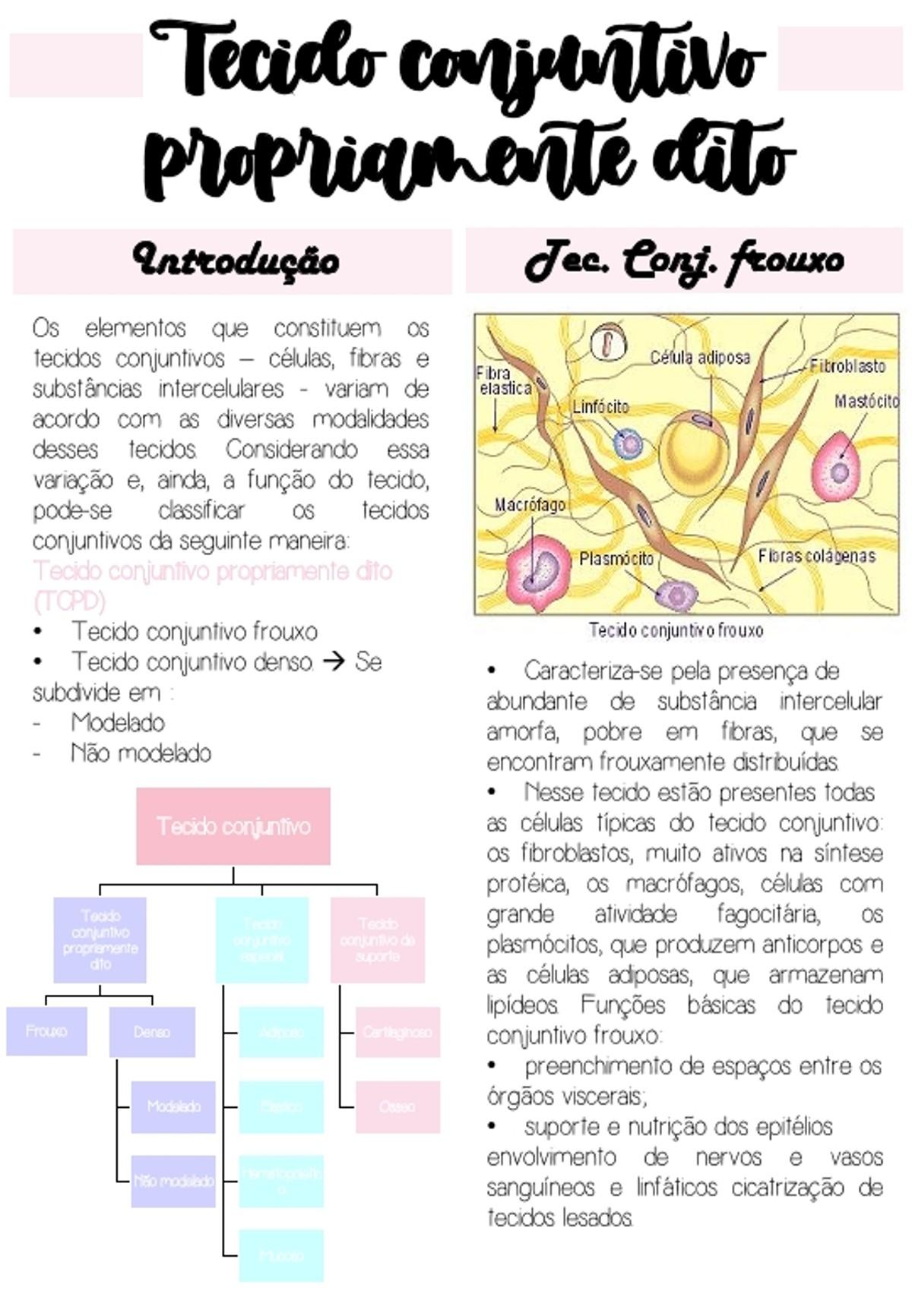 Pre-visualização do material Tecido conjuntivo propriamente dito (TCPD) - Denso e frouxo - página 1