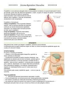 Epididimite, Orquite e orquiepididimite