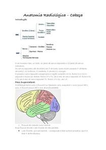 Anatomia Radiológica cabeca