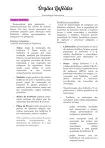 Orgãos Linfóides 2 1 - Imunologia