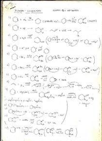 lista reações orgânicas (alcool, aldeido, cetona, amida, amina, lactona, anidrido, éter, éster, ácido carboxílico, aromáticos, alcano, alquenos, alquinos, SN1, SN2, SE, SEAr)