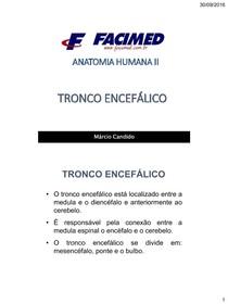 Aula 4   Tronco Encefálico...pdf