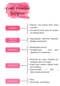 Corpos estranhos esofágicos