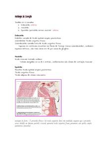 _Histologia do Coração
