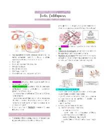 Tecidos Cartilaginoso