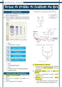 Resumo - Teoria do Portão de Controle da Dor