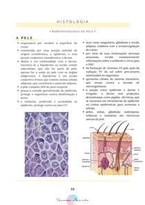 MORFOFISIOLOGIA DA PELE