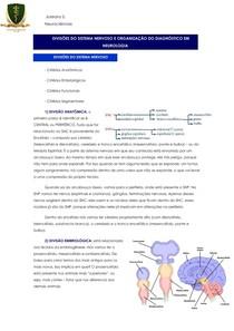Divisão Sistema Nervoso + Diagnóstico em Neurologia