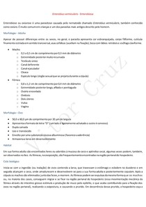 Enterobius vermicularis - Enterobiose